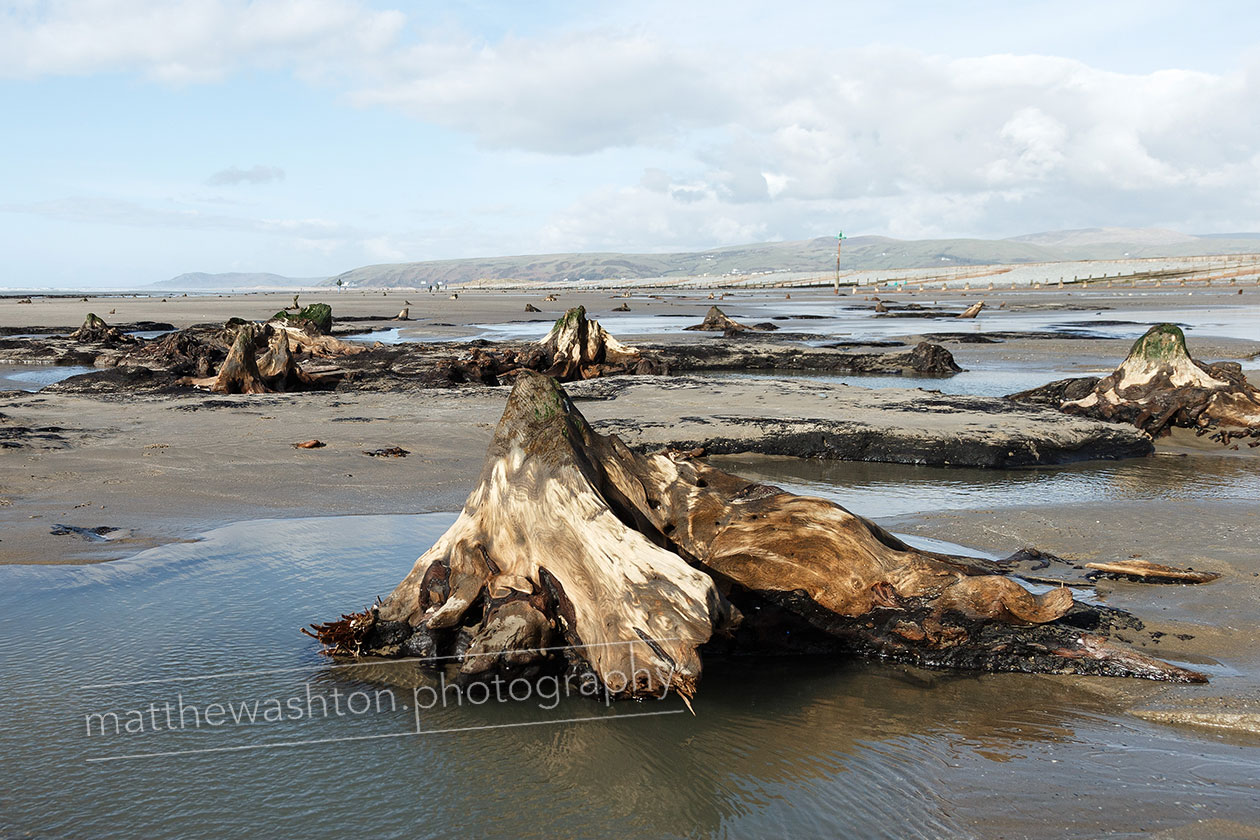 Matthew Ashton Photographer Borth Submerged Forest Wales
