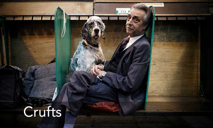 Matthew Ashton Crufts Photography Documentary Editorial
